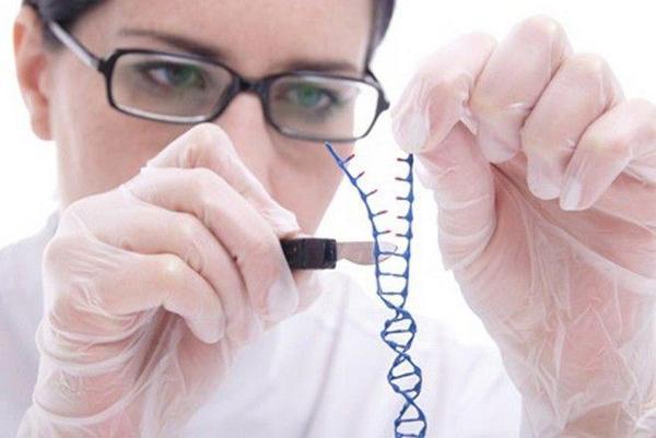 Chama-Se CRISPR e vem com polêmica