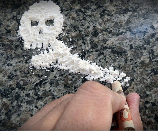 A flora bacteriana influencia os efeitos da cocaína