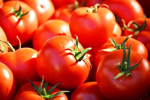 Aprenda a escolher bem os tomates para combater o câncer