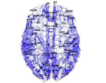 Uma equipa de investigadores norte-americanos e suíços conseguem o primeiro mapa completo de nossas conexões neurais em alta resolução
