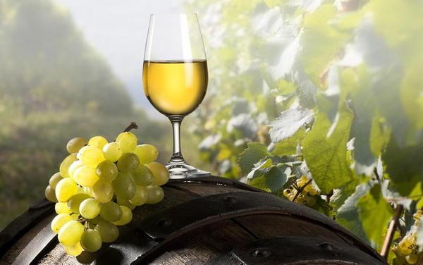 Beber muito vinho branco pode ser mais perigoso do que parece