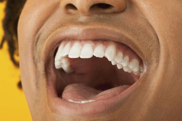 Célulastronco de polpa dentária para regenerar os ossos e os neurônios