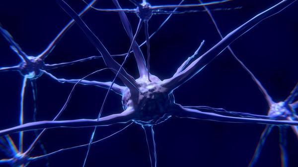 Estão sete vezes mais bactérias no cérebro com Alzheimer que em saudáveis