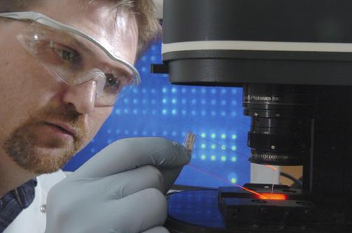 Moléculas com nanotubos de carbono para queimar as células cancerosas ou biochips para detectar precocemente alguns tipos de tumores