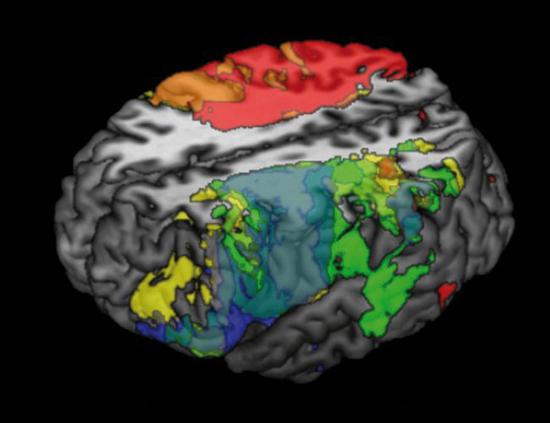 Mapa da inteligência