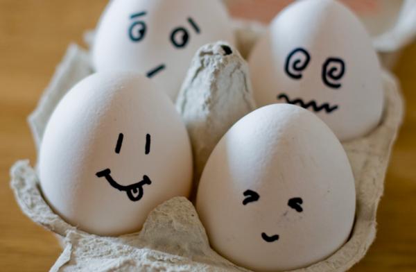 Não se confia em si mesmo um ovo de pesquisa