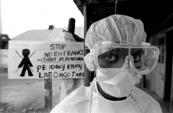 O vírus do ebola pode ter entre 16 e 23 milhões de anos