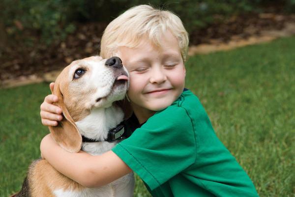 Os animais de estimação ajudam a que as crianças não sejam alérgicos