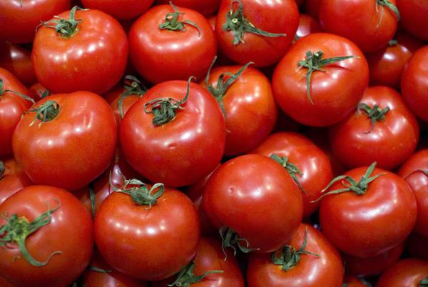 Os tomates cortados ao meio, o câncer de pele