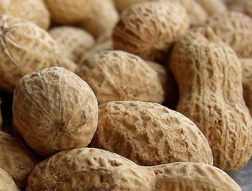 Por que há tantas crianças alérgicas ao amendoim?