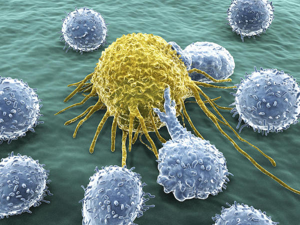 Prever a origem do câncer